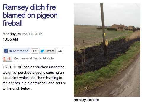 Ramsey ditch fire blamed on pigeon fireball   Latest News   Hunts Post